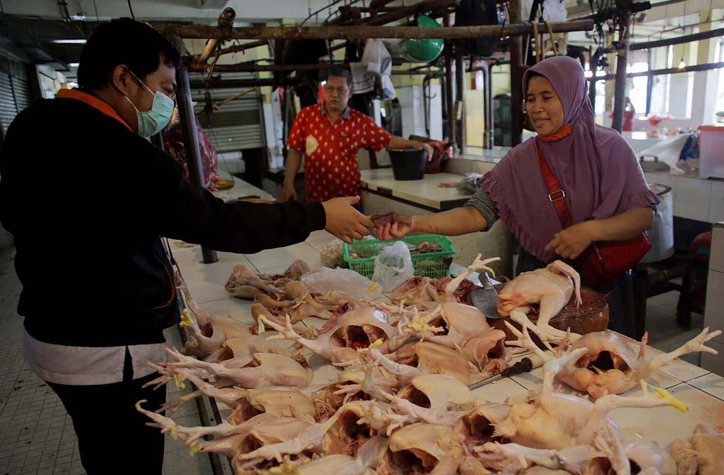 Jelang Lebaran Harga Permintaan Ayam Meningkat