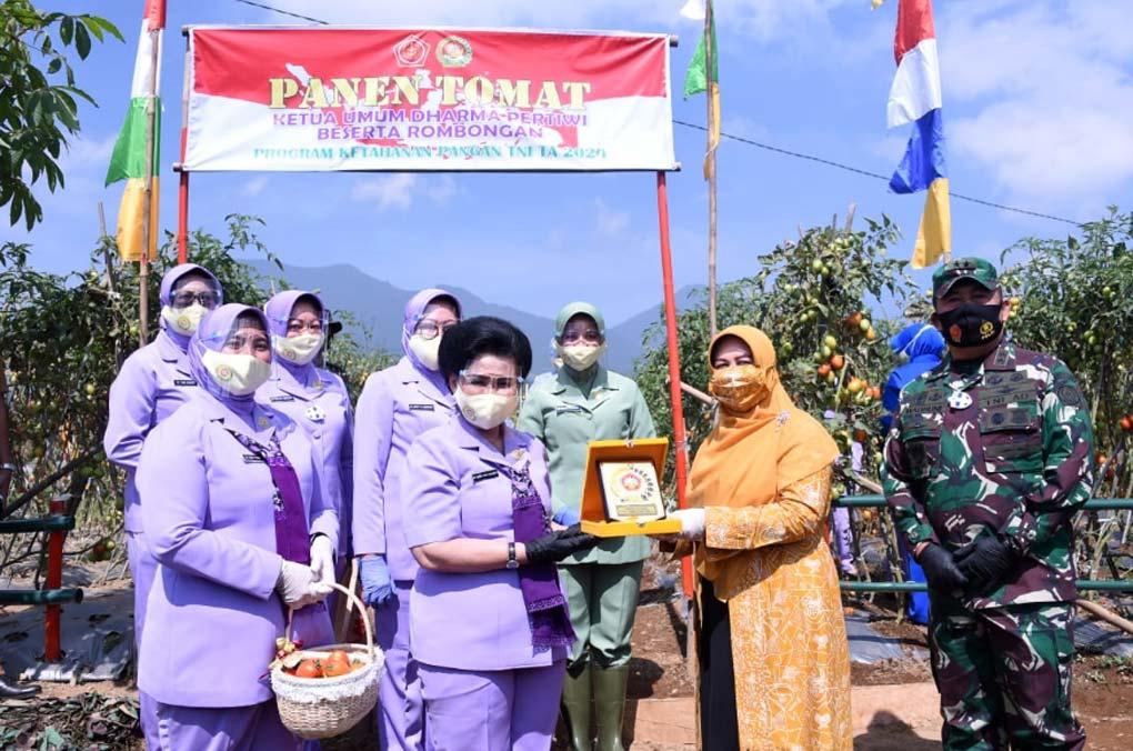 Ketum Dharma Pertiwi Tanam Perdana Ketahanan Pangan Nasional di Cianjur