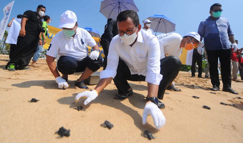 Jaga Kelestarian Alam, BTN Lakukan Konservasi Terumbu Karang dan Pelepasan Tukik