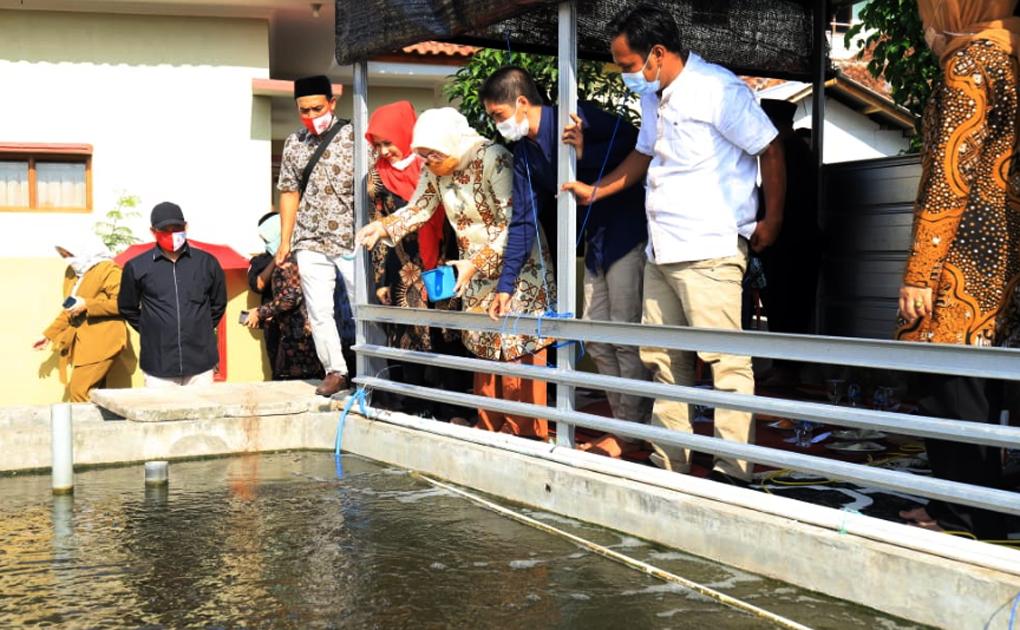 Menaker Ida Bahagia Program Bantuan Budidaya Ikan Nila dan Lobster Buka Lapangan Kerja