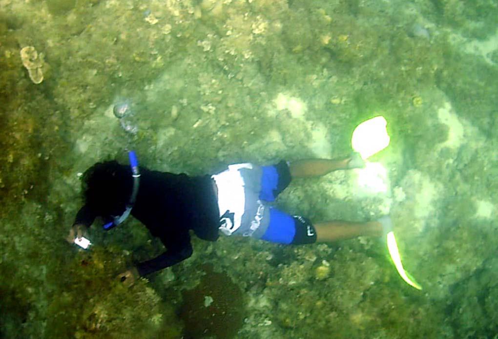 Serunya Wisata Di Pulau Seribu